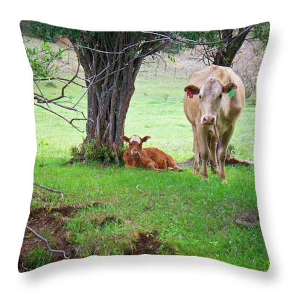 Mama Cow And Calf Throw Pillow by Mary Lee Dereske