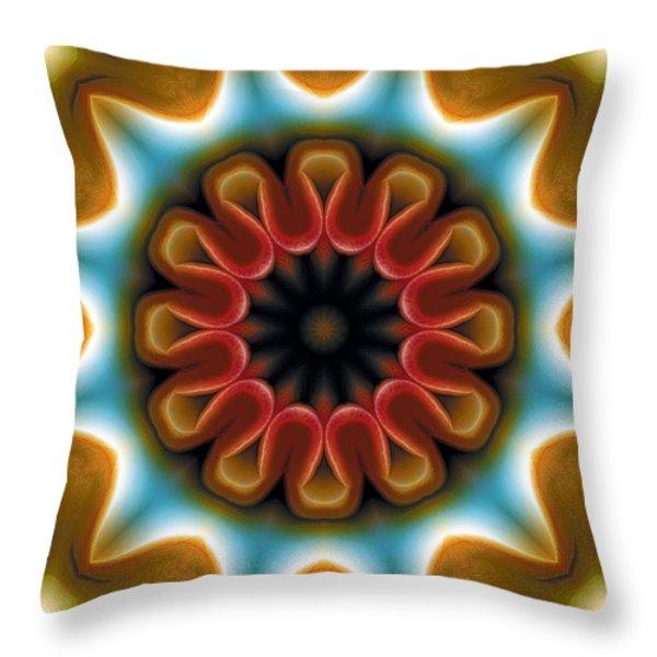 Mandala 100 Throw Pillow by Terry Reynoldson