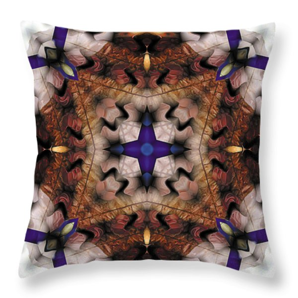 Mandala 17 Throw Pillow by Terry Reynoldson