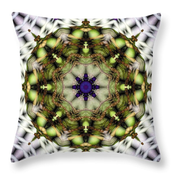 Mandala 21 Throw Pillow by Terry Reynoldson