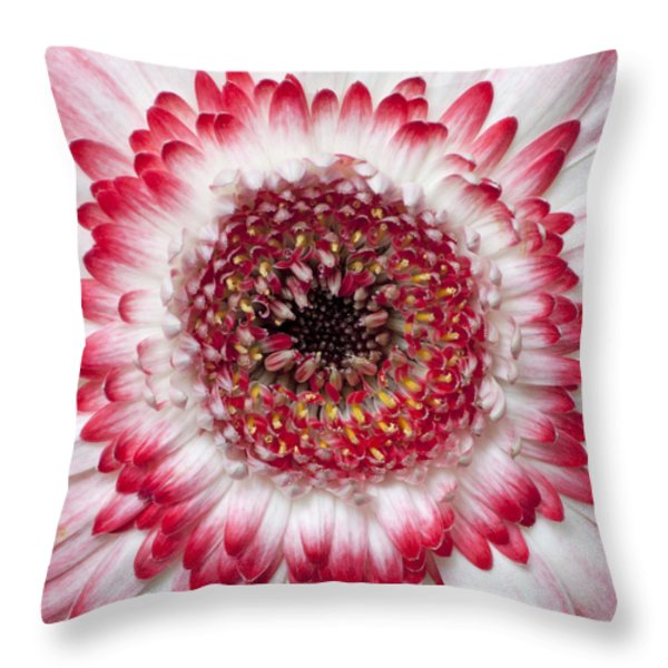 Mandala Throw Pillow by Daniel Csoka