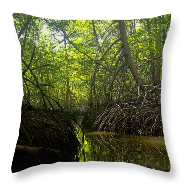 mangrove forest in Costa Rica 1 Throw Pillow by Rudi Prott