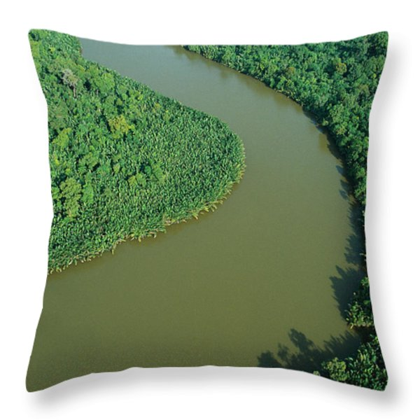 Mangrove Rhizophora Sp In Mahakam Delta Throw Pillow by Cyril Ruoso