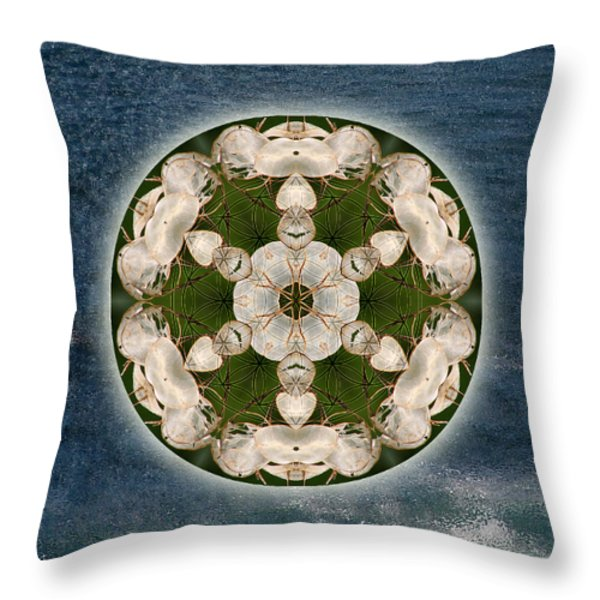 Manifesting Abundance Throw Pillow by Alicia Kent