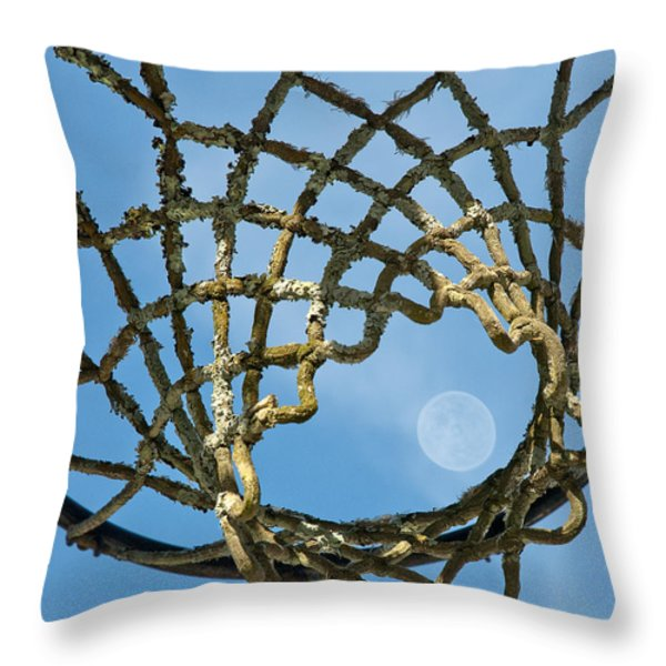 Many Baskets Made Many Moons Ago Throw Pillow by Lena Wilhite