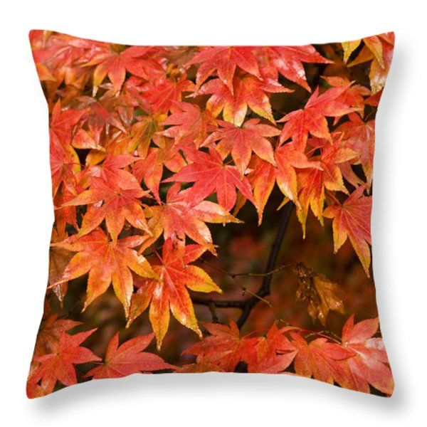Many Leaves Throw Pillow by Anne Gilbert