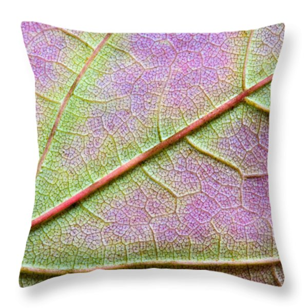 Maple Leaf Macro Throw Pillow by Adam Romanowicz