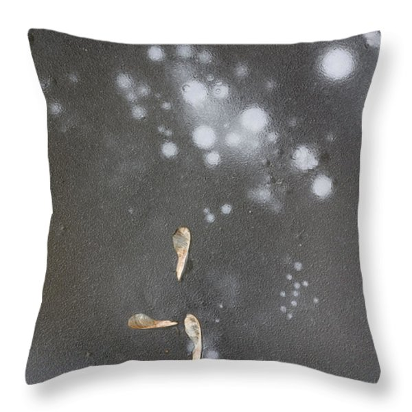 Maple Seeds On Ice Throw Pillow by Steven Ralser