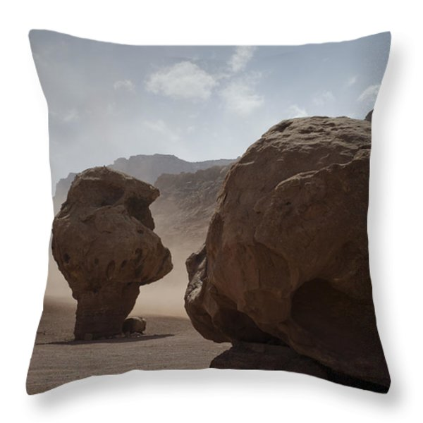 Marble Canyon No. 2 Throw Pillow by David Gordon