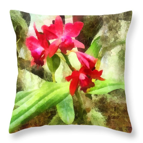 Maroon Cattleya Orchids Throw Pillow by Susan Savad