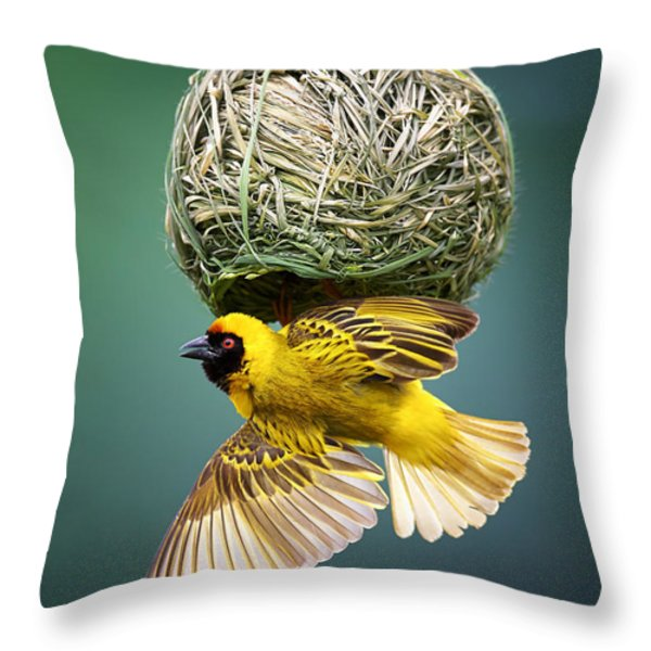 Masked Weaver At Nest Throw Pillow by Johan Swanepoel