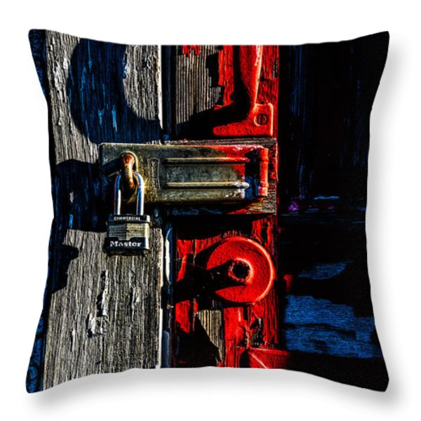 Master Of The Old Red Barn Throw Pillow by Bob Orsillo