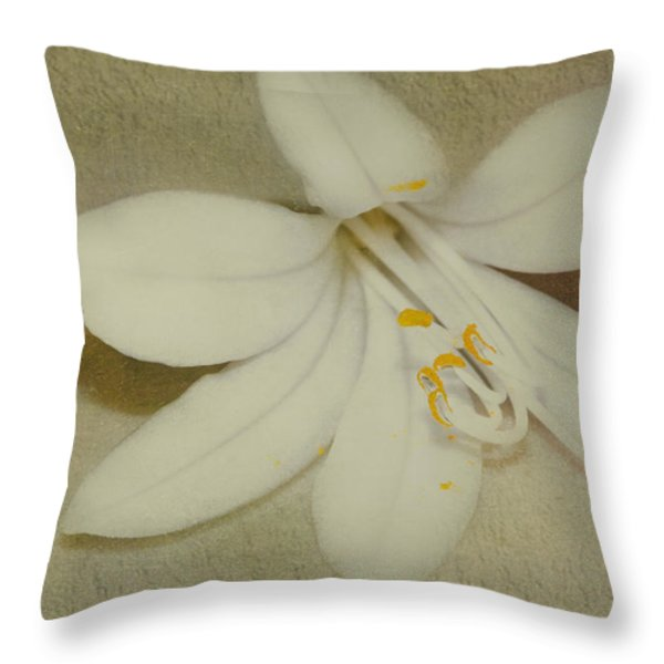 Maybelline Throw Pillow by Elaine Teague
