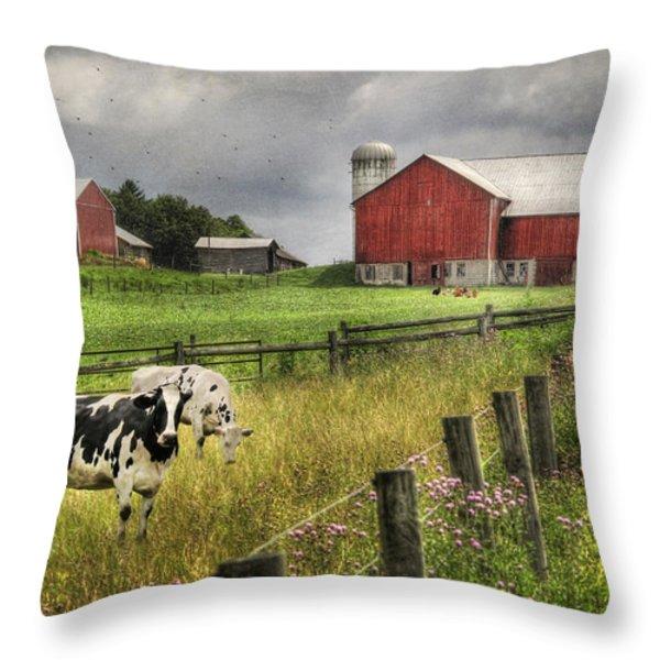 Mcclure Farm Throw Pillow by Lori Deiter