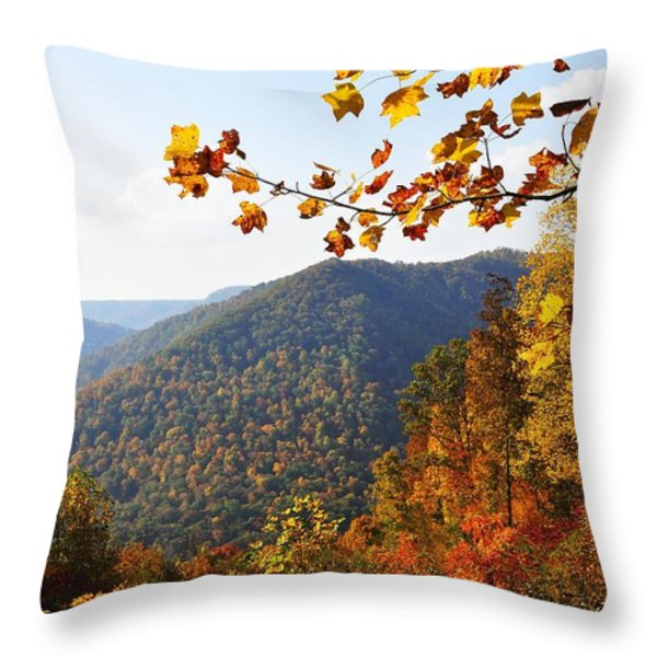 McGuire Mountain Overlook Throw Pillow by Thomas R Fletcher
