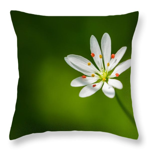 Meadow Candy - Featured 3 Throw Pillow by Alexander Senin
