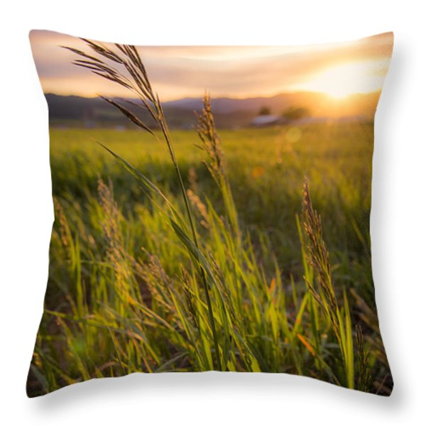 Meadow Light Throw Pillow by Chad Dutson
