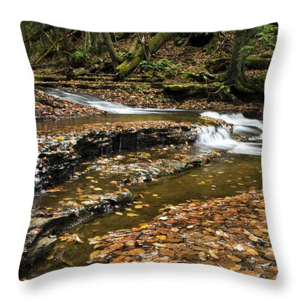 Meandering Waters Throw Pillow by Christina Rollo
