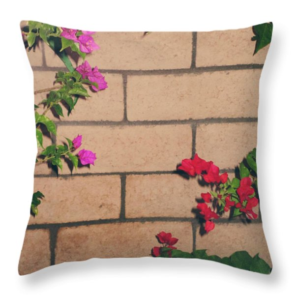 Meet in the Middle Throw Pillow by Laurie Search
