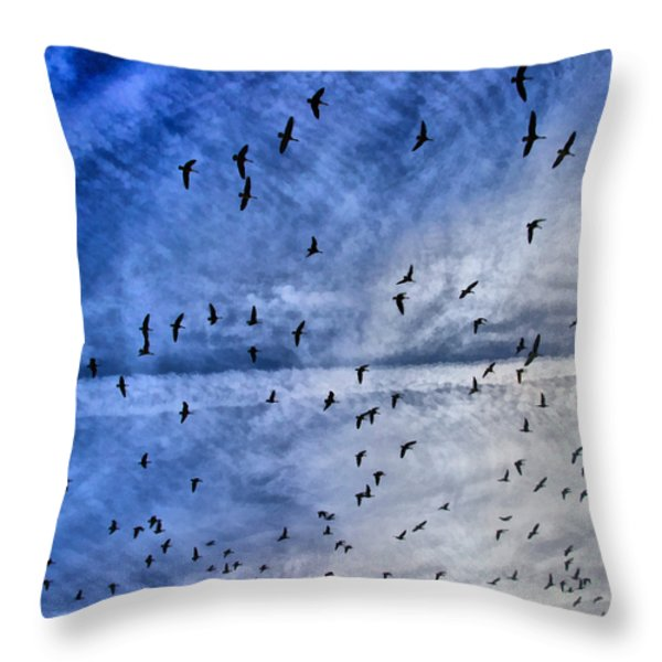 Meet Me Halfway Across The Sky 1 Throw Pillow by Angelina Vick
