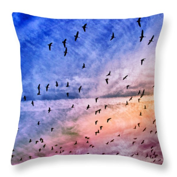 Meet Me Halfway Across The Sky 2 Throw Pillow by Angelina Vick