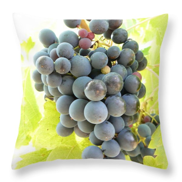 Almost Ready Throw Pillow by FRANCE  ART