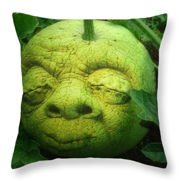 Melon Head Throw Pillow by Jack Zulli