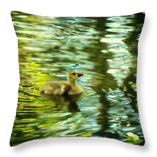 Memories Of Spring Throw Pillow by Melanie Lankford Photography