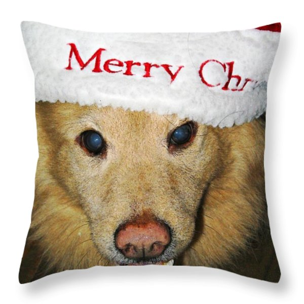 Merry Christmas Throw Pillow by Sarah Loft