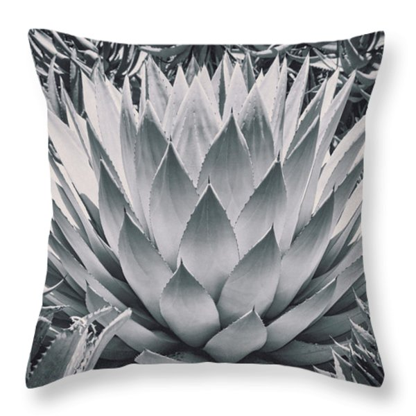 Mescal Agave Throw Pillow by Kelley King