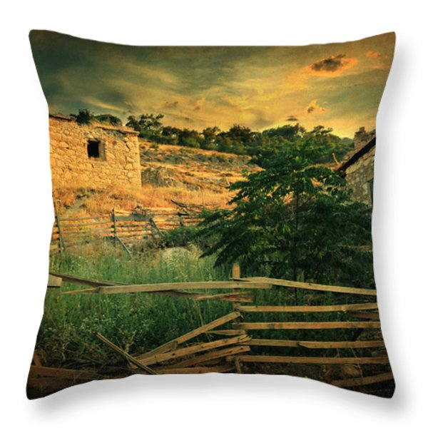 Mesmer Throw Pillow by Taylan Soyturk
