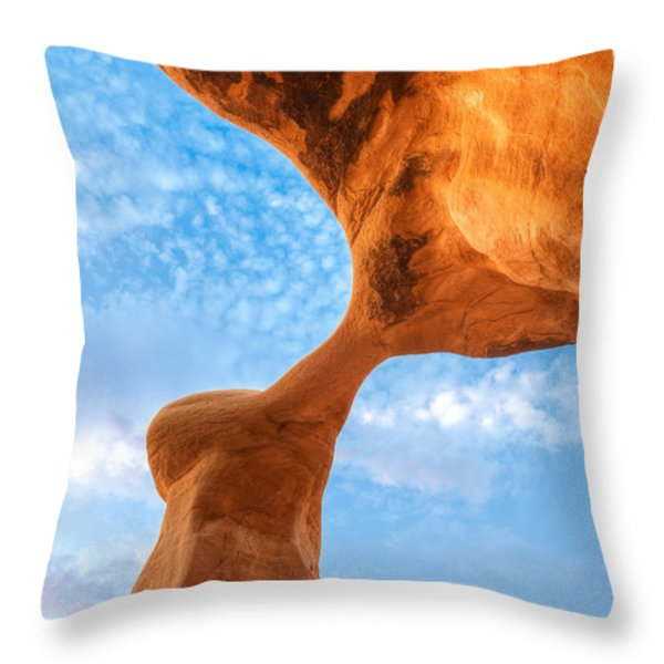 Metate Throw Pillow by Dustin  LeFevre
