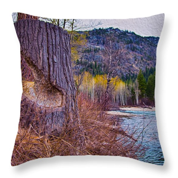Methow Riverbank Throw Pillow by Omaste Witkowski