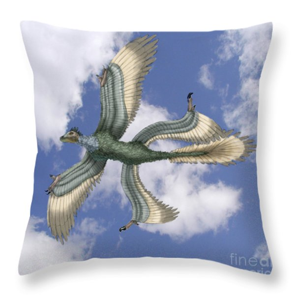 Microraptor Throw Pillow by Spencer Sutton