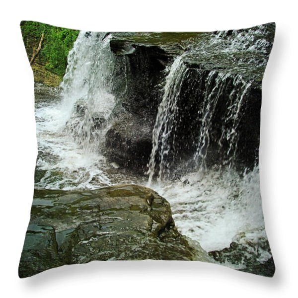 Middle Johnson Falls Throw Pillow by Lianne Schneider