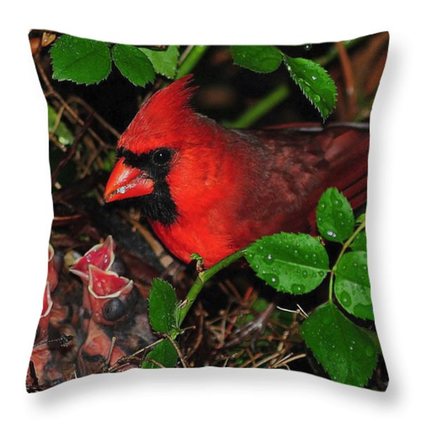 Midnight Snack ll Throw Pillow by Frozen in Time Fine Art Photography