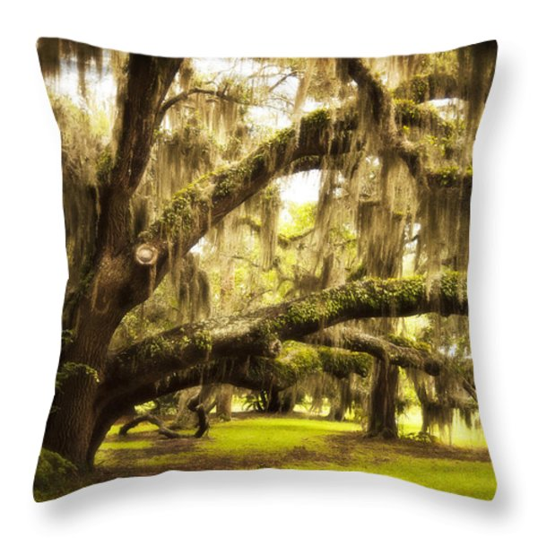 Mighty Live Oak Throw Pillow by Barbara Marie Kraus