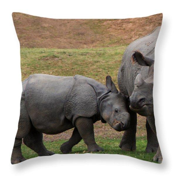 Mili and Sundari  Throw Pillow by Steve LLamb