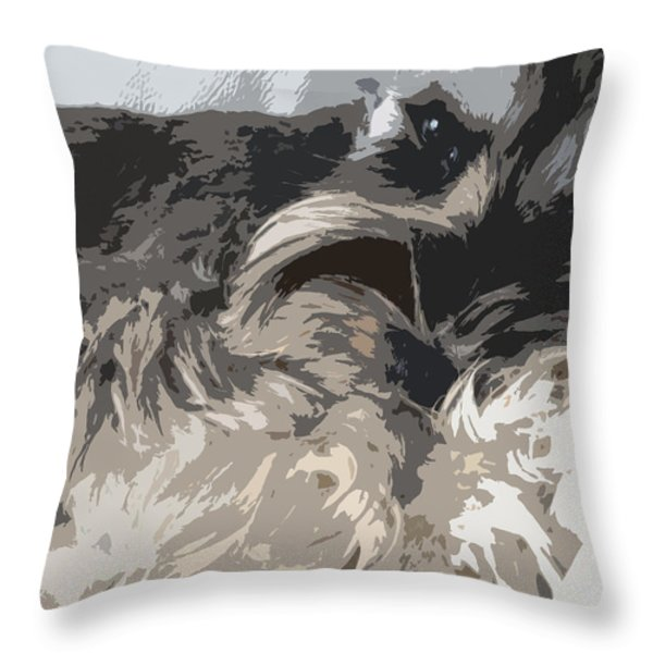 Miniature Schnauzer Throw Pillow by Sergey Sogomonyan