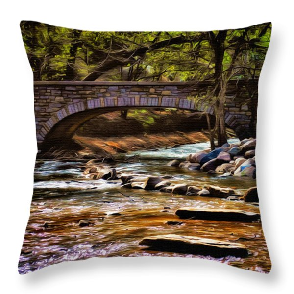 Minnehaha Creek 5 Throw Pillow by Todd and candice Dailey