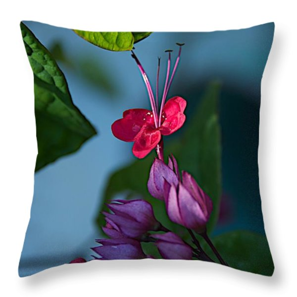 Miracle Vine Throw Pillow by Joseph Yarbrough