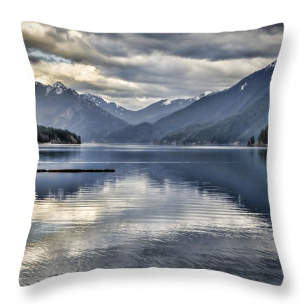 Mirror Image Throw Pillow by Heather Applegate