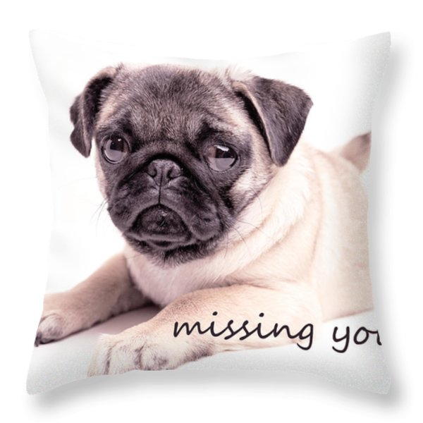 missing you... Throw Pillow by Edward Fielding