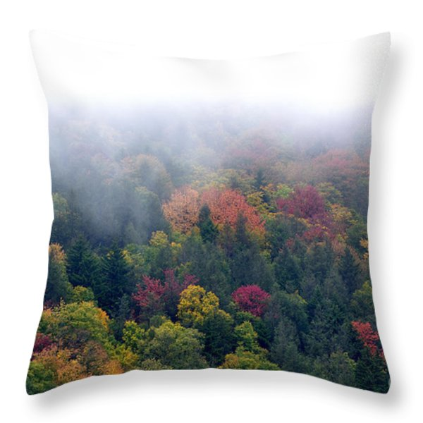 Mist And Fall Color Throw Pillow by Thomas R Fletcher