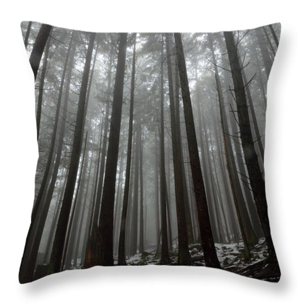 Mist In The Woods Throw Pillow by Kathy King