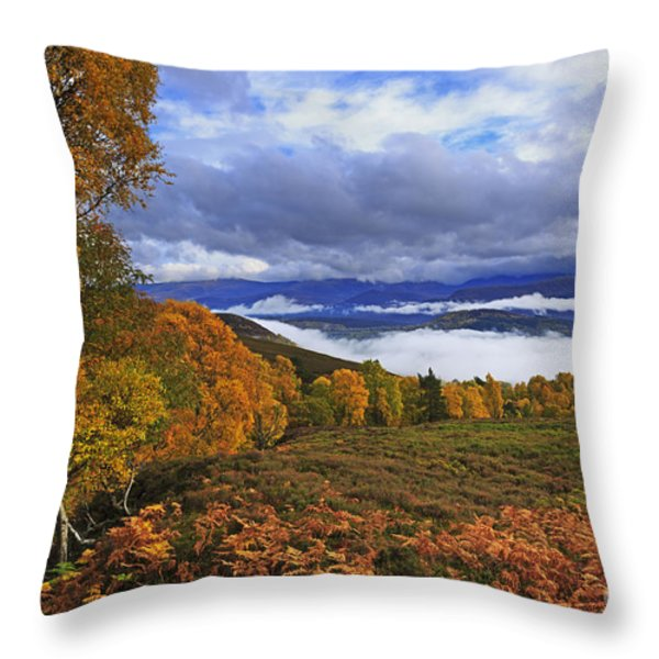 Misty Day In The Cairngorms II Throw Pillow by Louise Heusinkveld