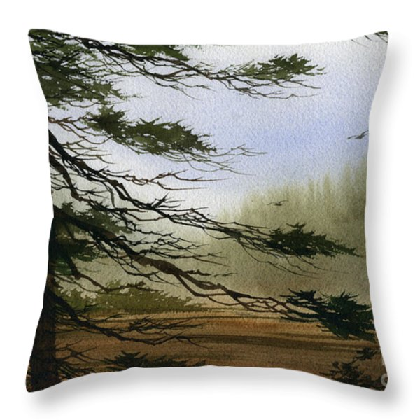 Misty Forest Bay Throw Pillow by James Williamson