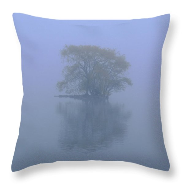 Misty Morning At Jamaica Pond Throw Pillow by Juergen Roth