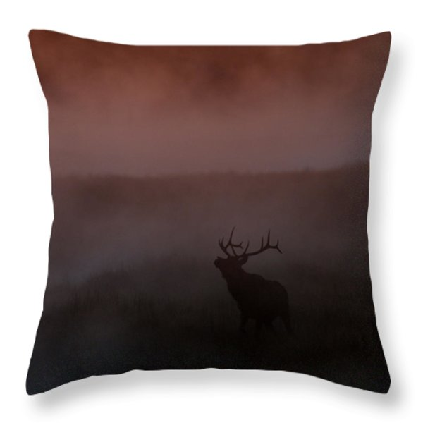 Misty Morning Elk Throw Pillow by Gary Langley