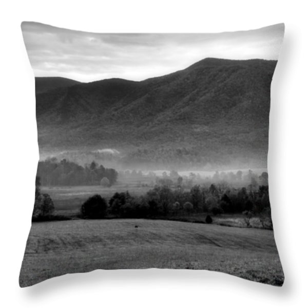Misty Mountain Morning Throw Pillow by Dan Sproul